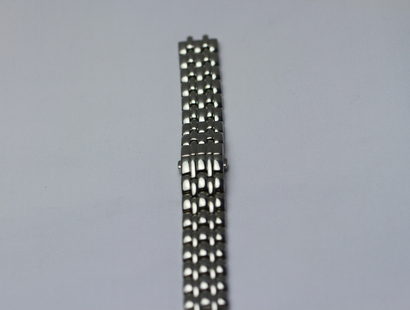 Stainless Steel Watchstrap