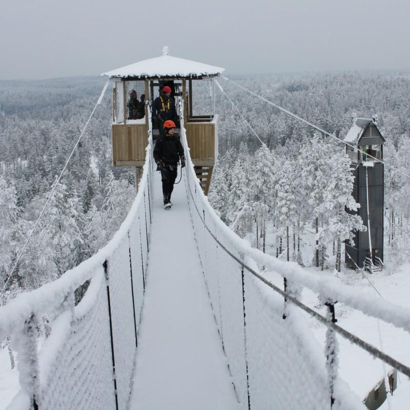 1. Zippa i vinterlandskap