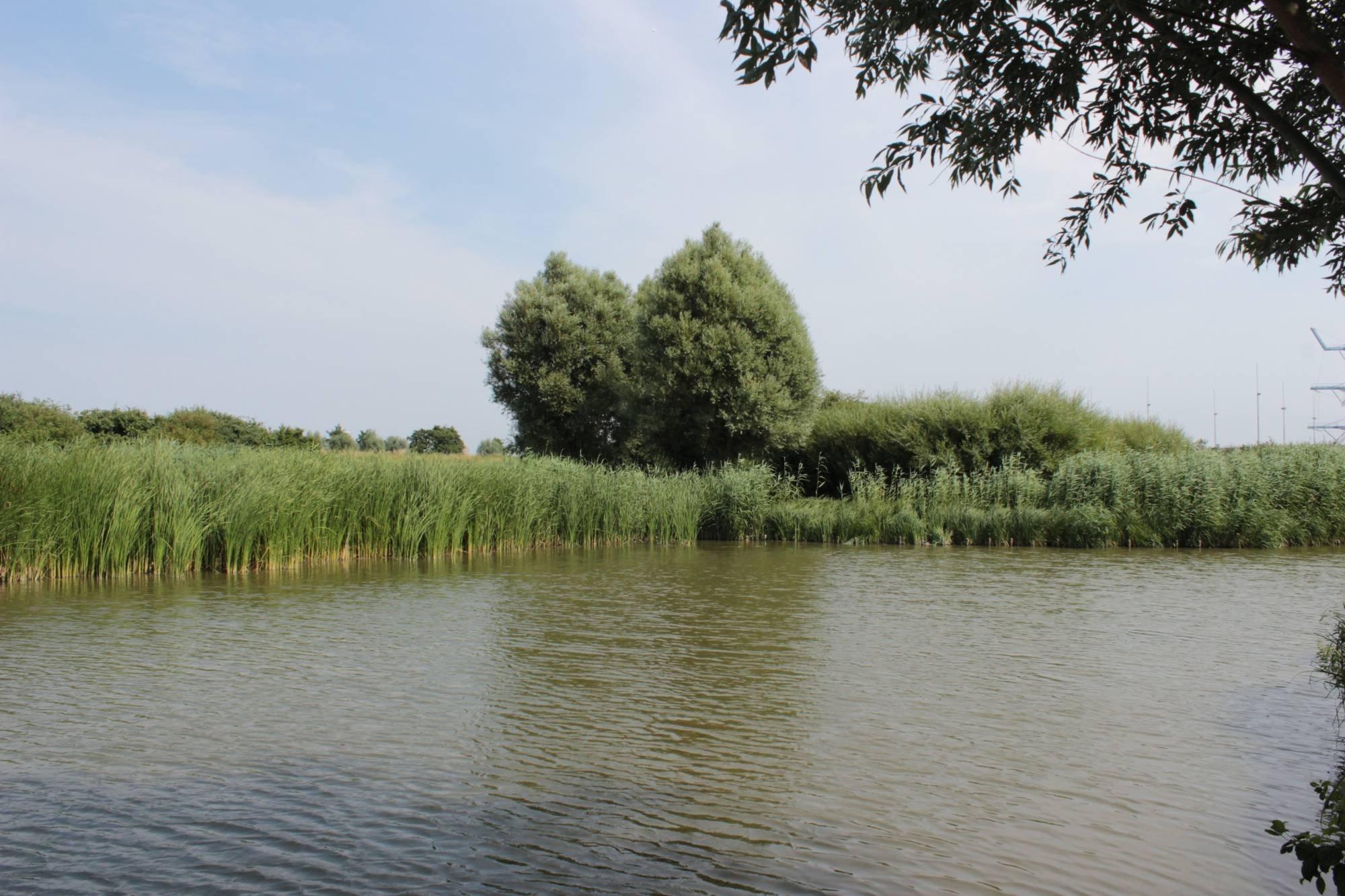 Waterbiesweg 46, The Hague