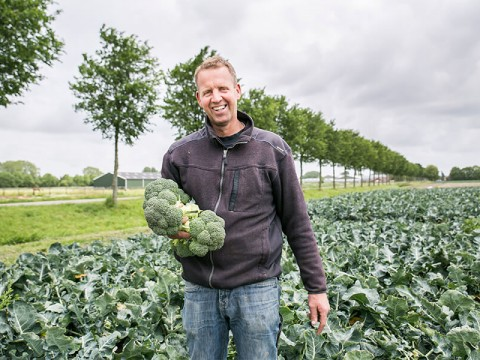 Gert-Jan  de Wit