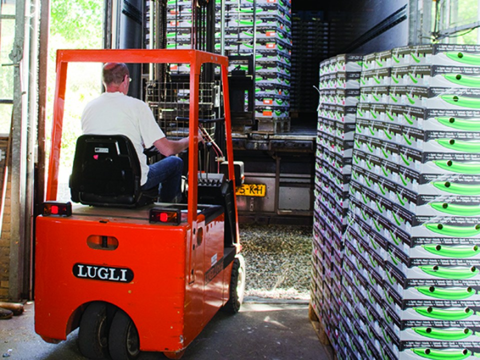 komkommers_op_transport.jpg