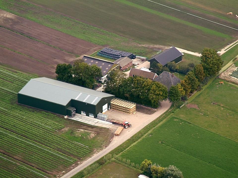 the_farm_1jpg0.jpg