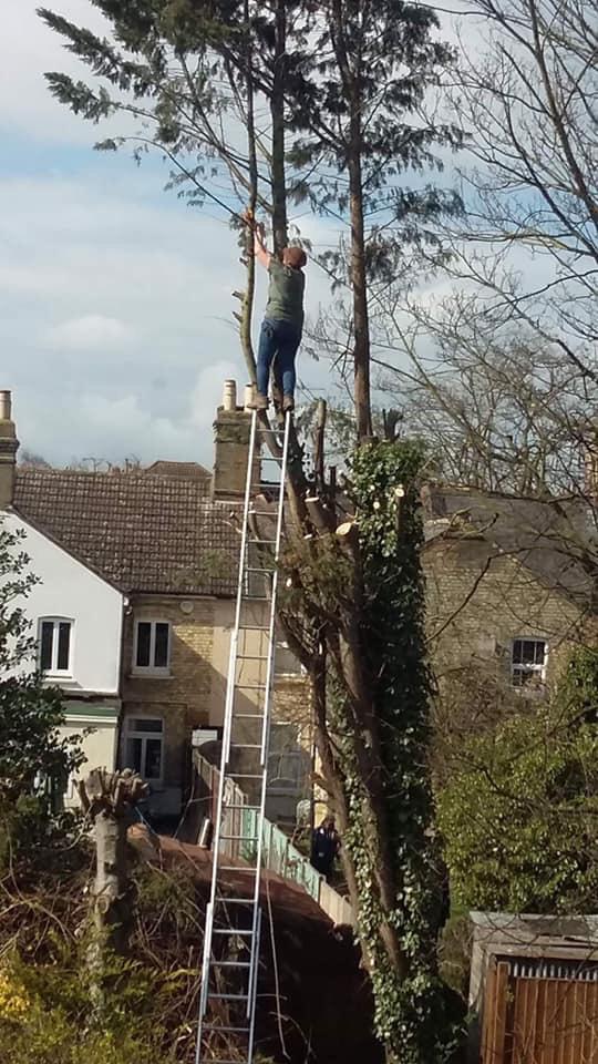 Balancing Act Vertikal Net