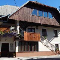 Appartamenti Bovec 15898, Bovec - Alloggio
