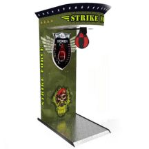 Boxer Strike Force Bild