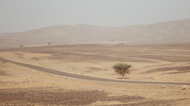 Hero image - 20210517 Marokko Solar Team Twente