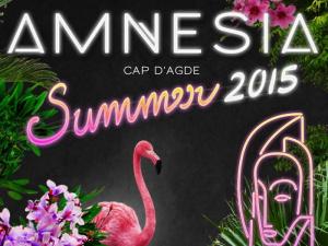 AMNESIA - Summer 2015