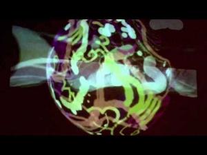 KURLY VJ+THE BROWNMONKEYS URBAN ART FEST 2014 DUBAI AL GHURAIR CENTRE