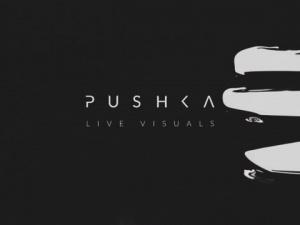 Pushka_Live_Visuals