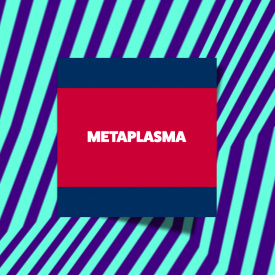 Metaplasma at LPM Amsterdam 2017 02