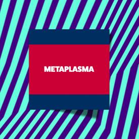 Metaplasma at LPM Amsterdam 2017 02