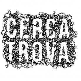 CERCA TROVA