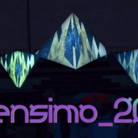 Sensimo Festival 2013