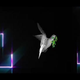 Showreel  motion graphic / 2015