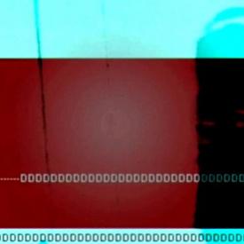 Nicolas Jaar Remix- The Bees -Winter Rose / Ray-V - Live visual set