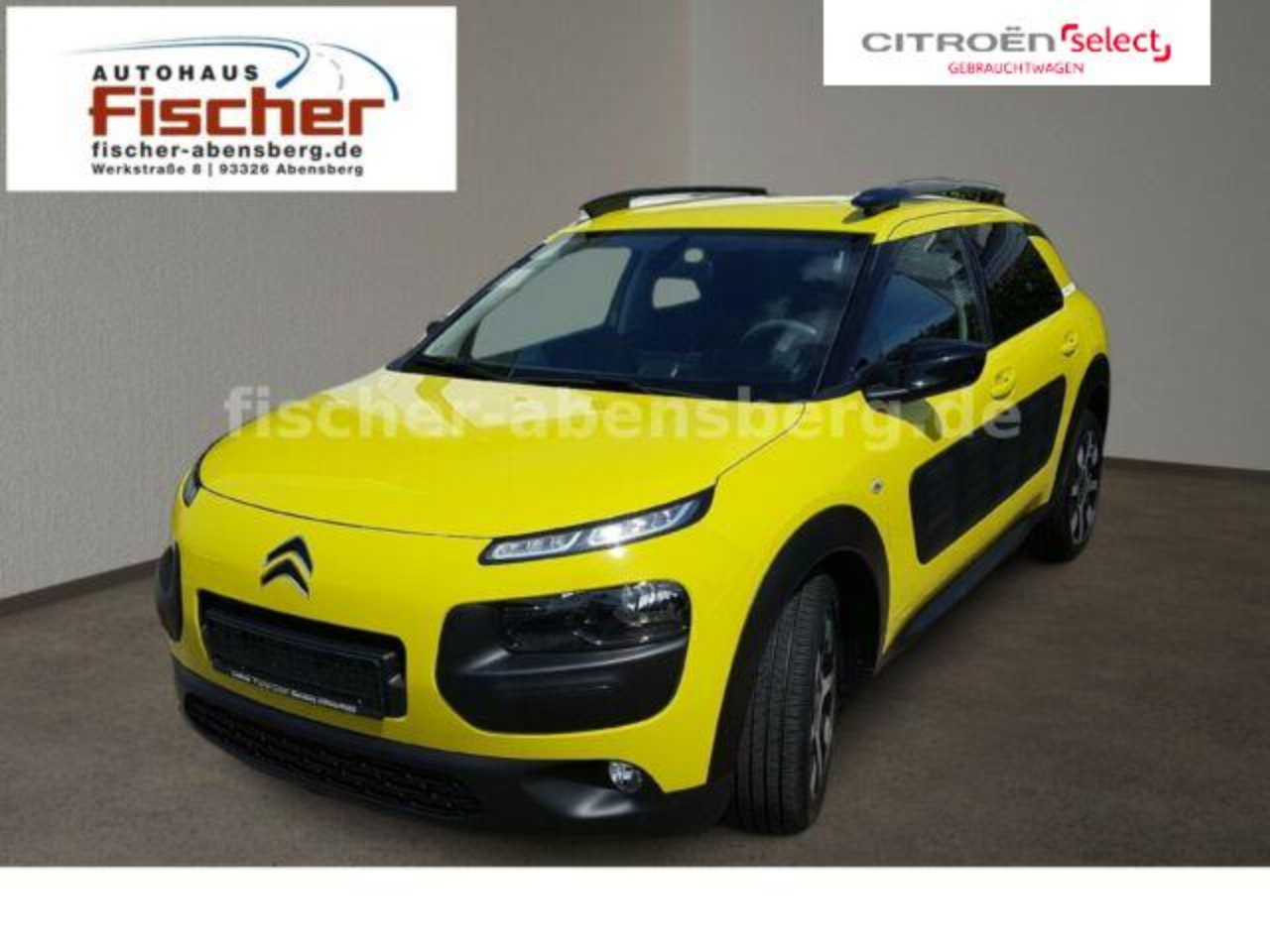 Citroën C4 Cactus BlueHDi 100 Selection