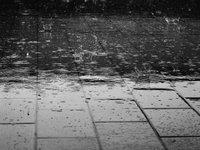 Синоптики прогнозують найближчої доби дощі в більшості областей України