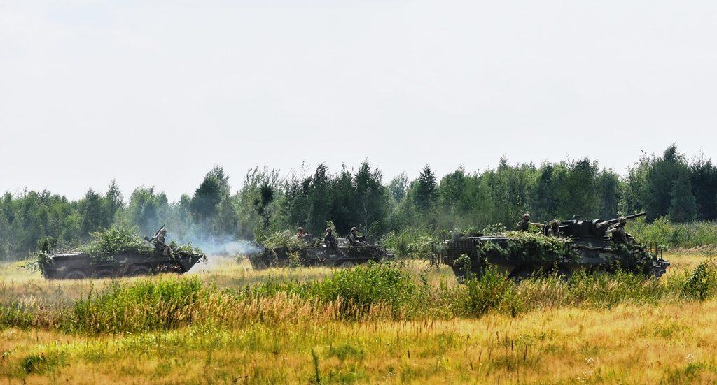 У Житомирській області відбулися тактичні навчання десантно-штурмових бригад (ФОТО)