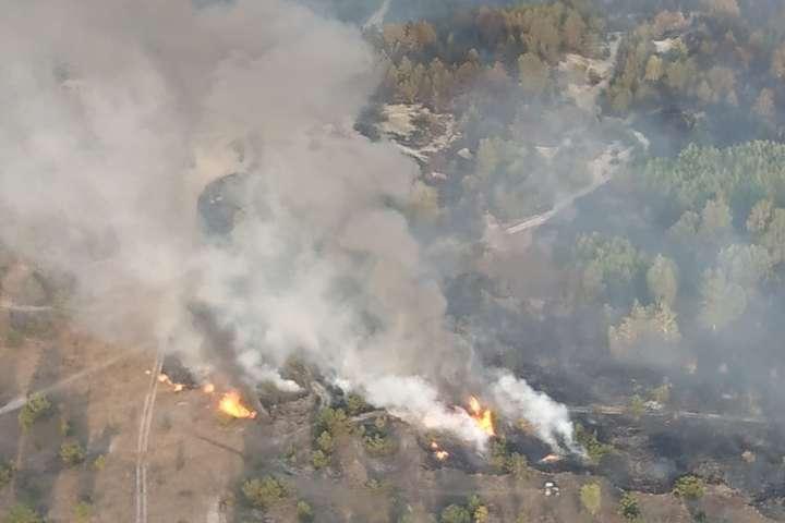 На Чернігівщині на території військового полігону загорівся ліс