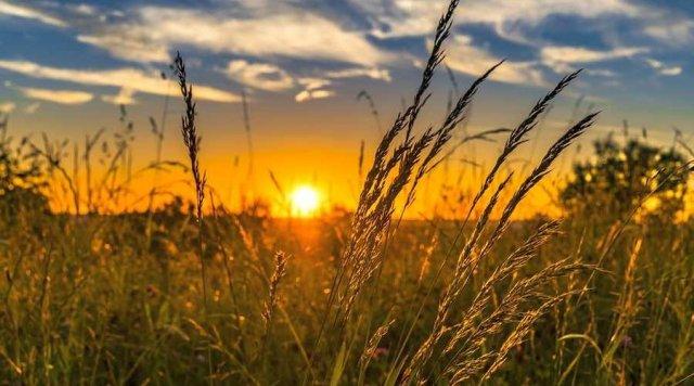 Погода на Херсонщине в ближайшие дни будет сухой и жаркой, - синоптики