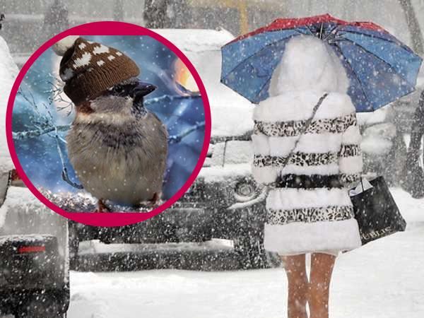 Сніг, дощі та ожеледиця: де буде небезпечна погода (КАРТА)
