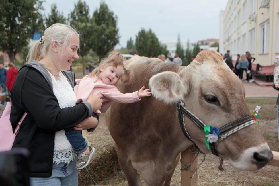 У Сумському НАУ працюють над виробництвом гіпоалергенного молока А2