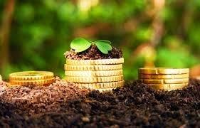 Завышенная ставка земельного налога: как быть - СМИ UNP.news