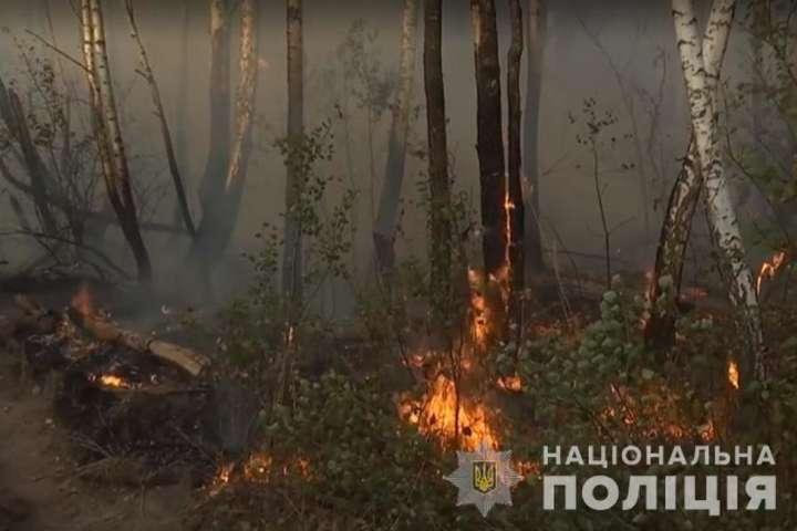 Жінка підпалила траву заради помсти і спровокувала масштабну пожежу в Чорнобильській зоні