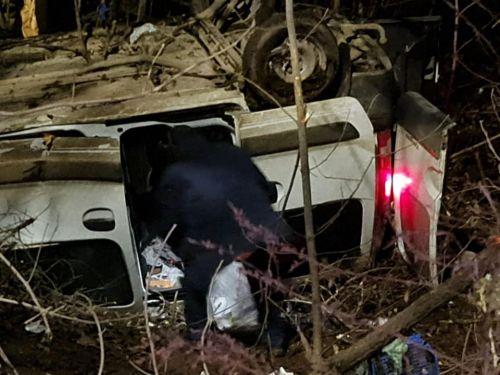 Всередині дитина: в Березовиці авто злетіло з дороги в прірву і перевернулося (фото)
