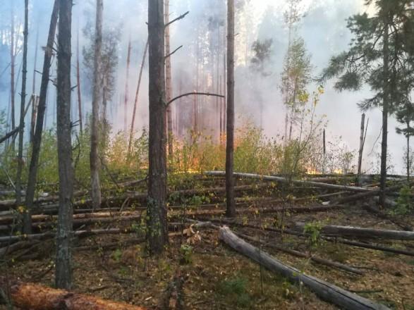 Пожежу у Чорнобильській зоні вже другий день гасять за допомогою авіації
