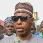 Второе покушение за неделю: террористы использовали заминированного осла против нигерийского губернатора