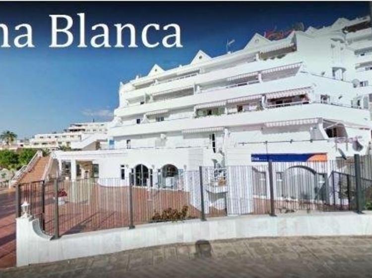 Business with space Colina Blanca, San Eugenio Alto – Costa Adeje, Adeje