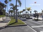Oficina Playa de Las Americas – Adeje, Adeje