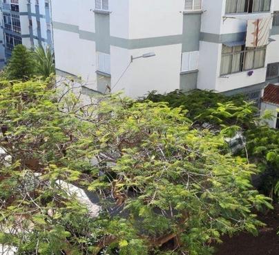 Apartament El Cardonal, Santa Cruz de Tenerife