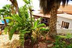 House / Villa Los Menores, Adeje