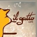 Il gatto caffe
