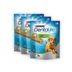 2+1 DENTALIFE Daily Oral Large