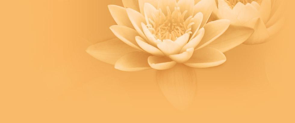 Thai massage nina Nina Thai