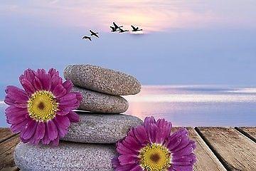 Chinese Wellness Full Body Massage Centre - Ipswich