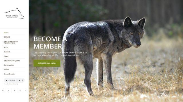 Wolf Haven International