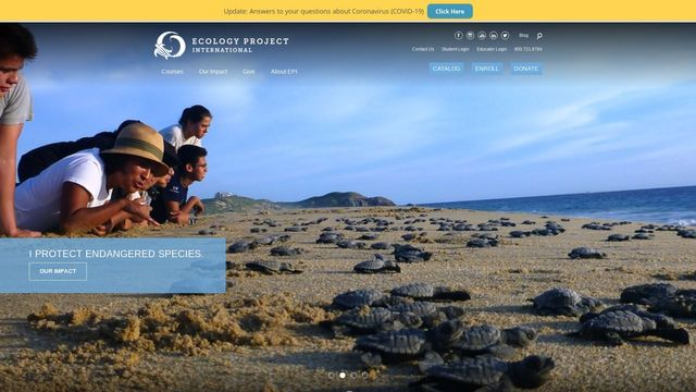 Ecology Project International