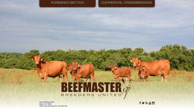 Beefmaster Breeders United