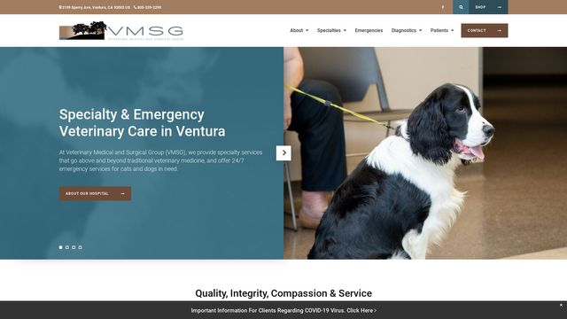 Veterinary Medical and Surgical Group (VMSG)