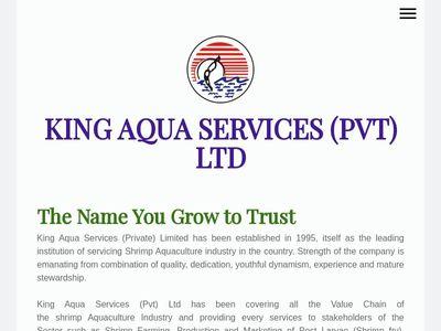 King Aqua Services