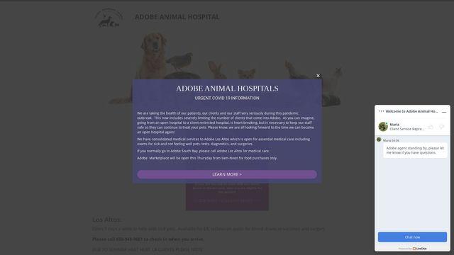Adobe Animal