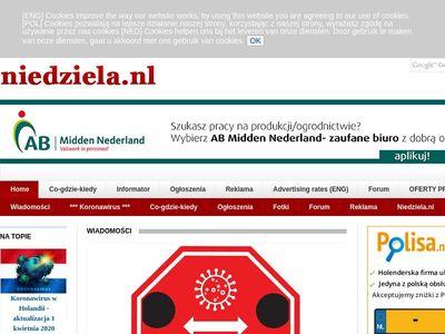 Niedziela ogloszenia www nl marshillmusic.merchline.com :