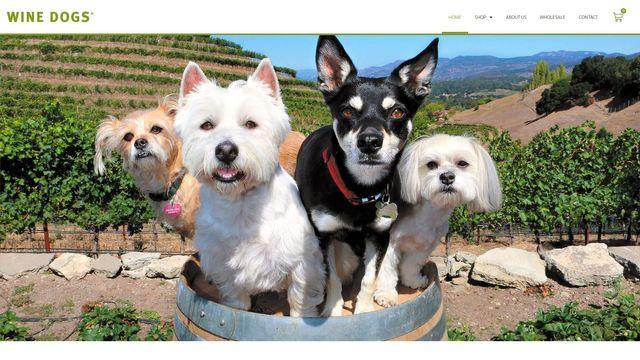 Giant Dog Pty Ltd