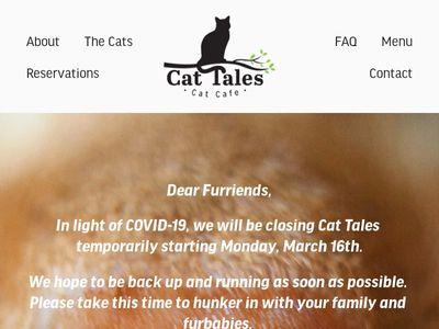 Cat Tales Cat Cafe