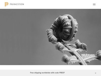 Princeton Asia (Beijing) Consulting Ltd.
