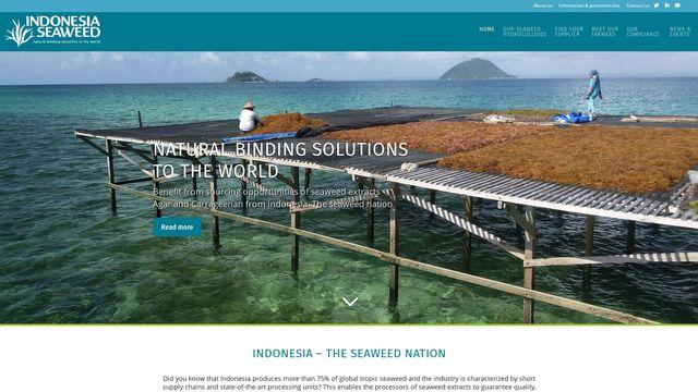 Indonesia Seaweed